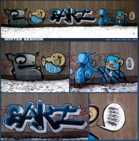 winter session by The-Kiwie