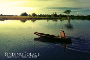 Finding Solace by perigunawan