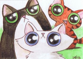 Funny cat watercolour howdy by KingZoidLord