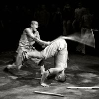 Shaolin Monk 2 by Alex4D