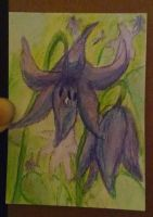 Dogtooth Violet by AluminumSunset