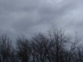 Clouds with Treetops by leech3000
