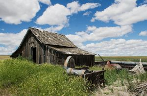 Barn and Seed Separator by TRunna