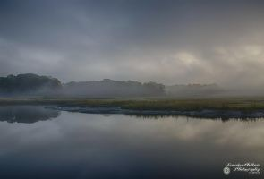 Pelham Bay Marshes 3 by ForsakenOutlaw