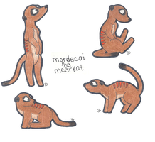 Mordecai the Meerkat by xXxSnuffleBunnyxXx
