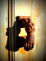 knock knock... by dtrford