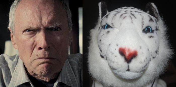Why I Named My White Tiger Clint Eastwood by Veni-Mortem