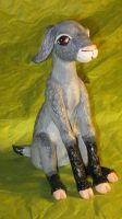 Baby Goat by GabriellesBabrielles