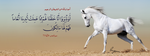Surat Ya-Seen Ayah 71 -  FB Cover by LMA-Design