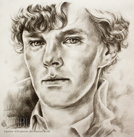 Sherlock by equine-whisperer