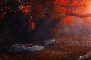 Our Lost Things by ildiko-neer