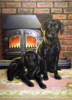 Dogs by the Fire by gassyoldman