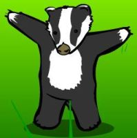 BADGER BADGER by badgerbadgerplz