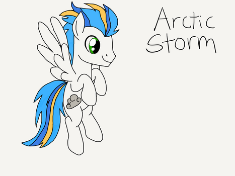 Arctic Storm by hurricanethedragon