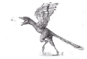 Archaeopteryx by TGHarrison