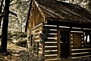 Shack in the Woods by spcbrass