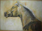 Golden horse by daphnedesign