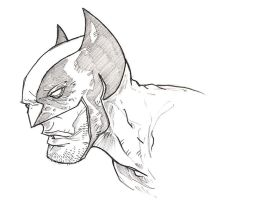 Wolverine by pencil-ambush
