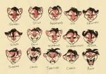 Abeo Expressions by Panimated