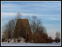 Will be seen only in winter... by Yancis