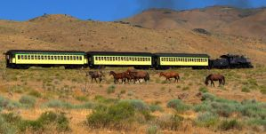 Wild Horses and train by MartinGollery