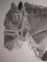 Working Horse TRADITIONAL by fantreasureplanetljs