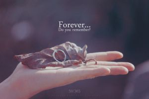59/365 Forever... Do you remember? by ceesevenmarzartworks