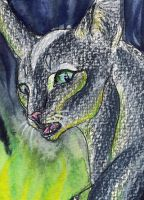 .: Underneath -ACEO :. by Shien-Ra
