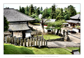 Stones and Temples - Nara by rikachu426