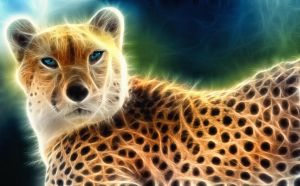 Gepard light by nuforms