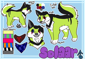 Solaar Frost || Reference Sheet by vapurreon
