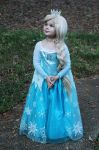 Queen Elsa Cosplay XD by NoFlutter