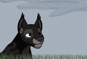 Tall Grasses -commish- by SummerSnowLeopard