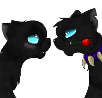Scourge X Kitty by xXInsaneKittyCatXx