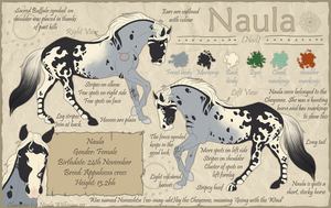 Naula Reference V1 by Ilyana88