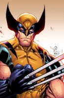 Savage Wolverine by AlonsoEspinoza