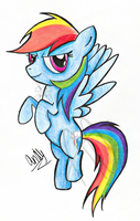 Rainbow Dash by CaptainWackywhiskers