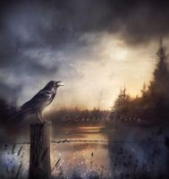 The Raven Poem by Aeternum-Art
