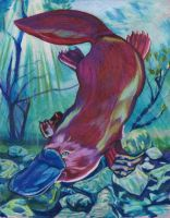 Placid Platypus by NicoPony