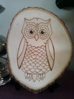 Pyrography Owl by LexC7