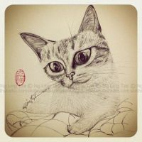 cat drawing practice (06) by tamaow