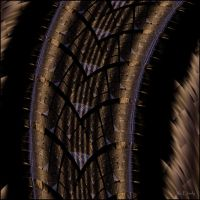 Where the Rubber Meets the Road by VicEberly