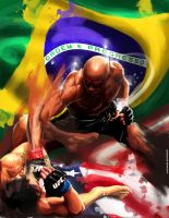 UFC 148 Silva vs Sonnen by acir