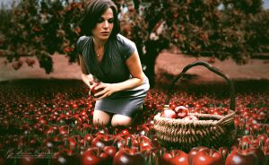 Apples by AnnaProvidence