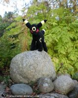 Wild Umbreon Appeared by Tedimo