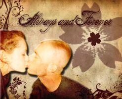 always and forever by shellyllauer