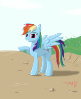 Dash, Rainbow Dash by Eriada1992