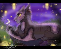 Smoldermolderdoo Commission: .SANDYSPOTS. by Wolf-Chalk