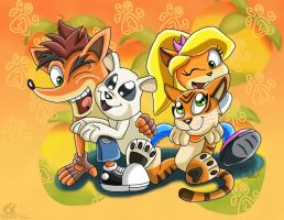 Coco And Crash!! by boy-wolf