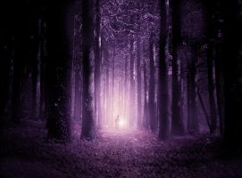 The Watcher in the Woods by Gerry-And-Me